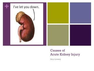 Case study 10 acute renal failure